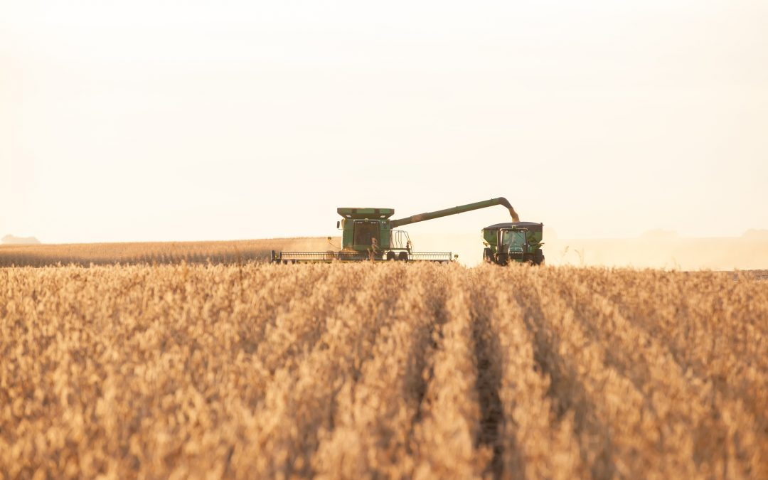 Fall Harvest is a Great Time for Ag Lending